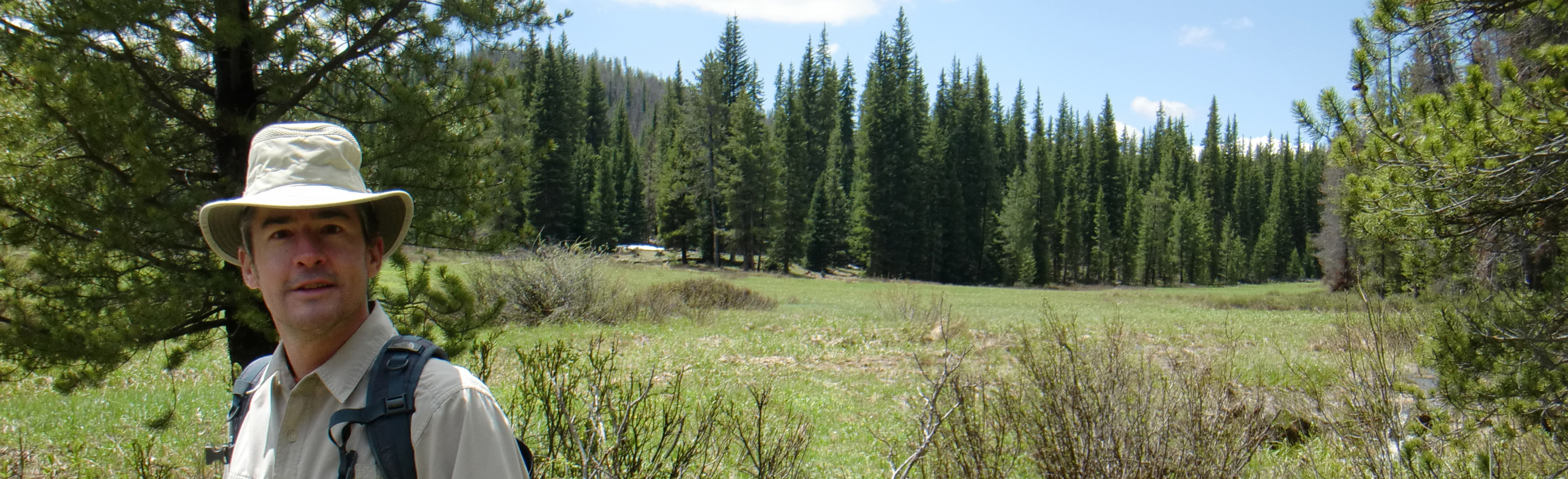 Another beautiful Colorado mountain meadow...and a gringo.